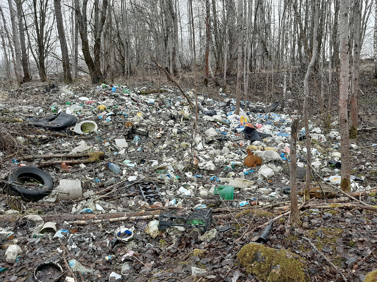 В смоленском поселке Одинцово нарастают мусорные горы