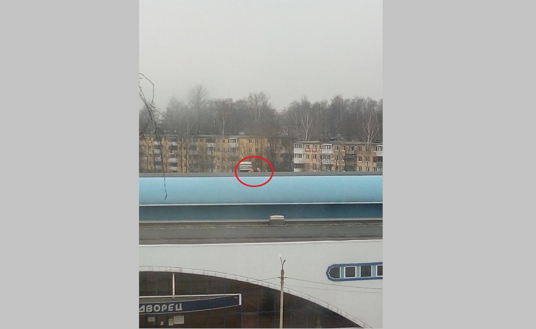 Дети залезли на крышу ледового дворца в Смоленске