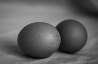 В Смоленске мошенники снимали порчу яйцами